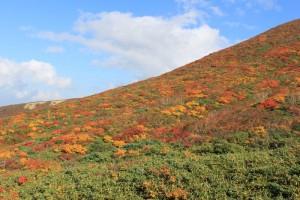 栗駒山の紅葉と青空