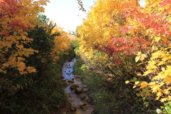 岩手県栗駒山の登山道。ドロ道で足場が悪いポイントもあります。