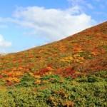 岩手県栗駒山の紅葉