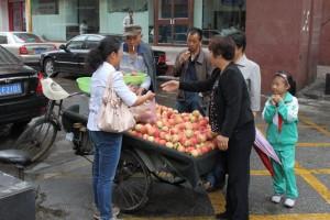 青海省西寧市,果物