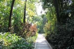 広州の大自然、観光名所