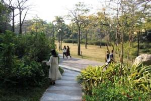 広州の大自然、散歩に最適な観光名所