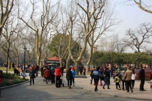 上海の中山公園