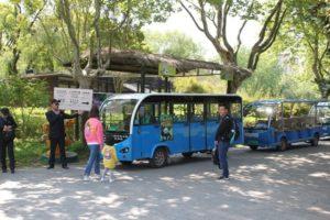 上海野生動物園の園内バス