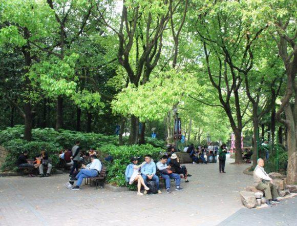 人民公園のベンチ