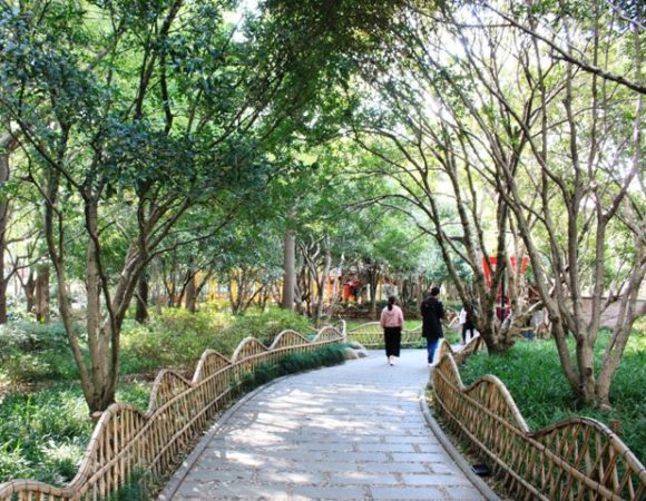 古城公園の散歩道
